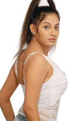 Sindhu Tolani Spicy Hot Wallpapers