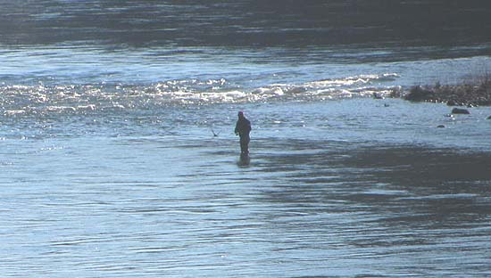 A lone man standing in shallow water before a white water rapid fishing for steelhead