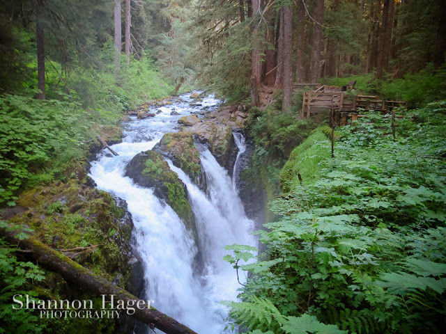 Shannon Hager Photography, Sol Duc Falls, Waterfall