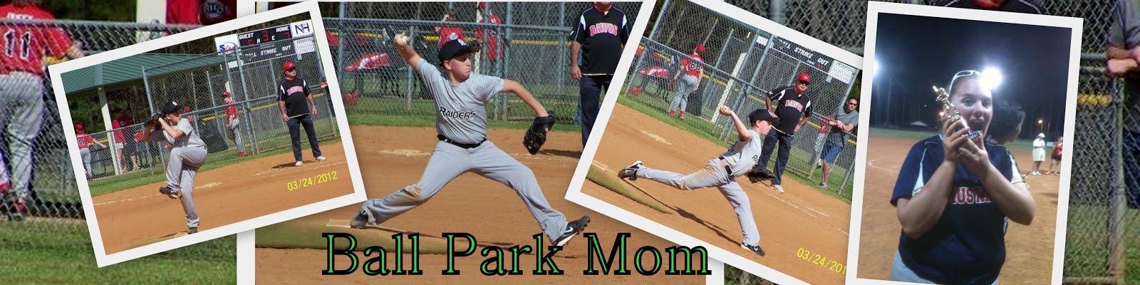 Ballpark mom