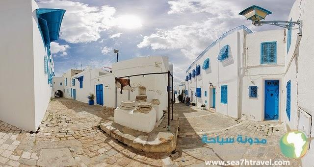 أجمل الأماكن لزيارتها في تونس