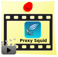 DominioTXT - Proxy Squid