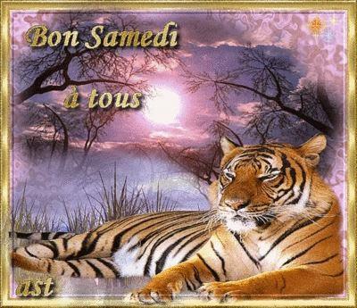 Lady Tiger Emi lie M - Tome III - Page 15 A+bon+samedi