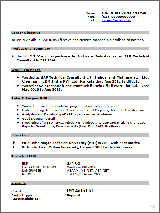 professional resume resume sle of sap technical
