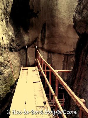 pasarela canion 7 scari