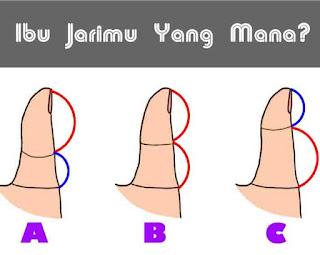 Bentuk ibu jari