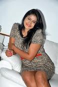 Actress Tanusha Glamorous photos-thumbnail-6