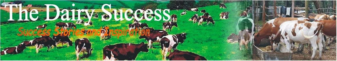 Dairy Farming Success Stories
