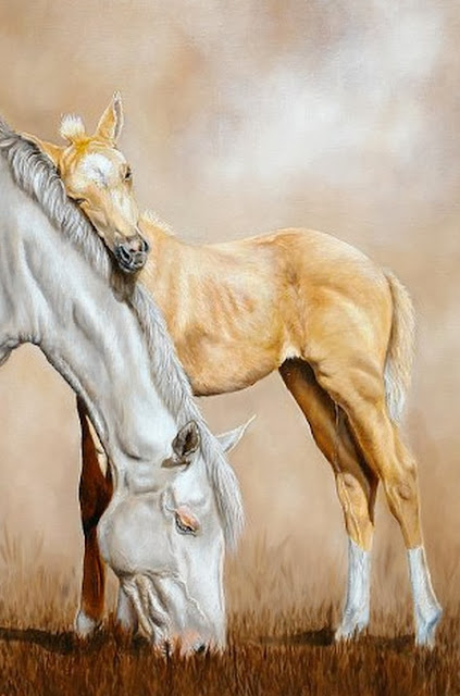 caballos-hermosos-imagenes