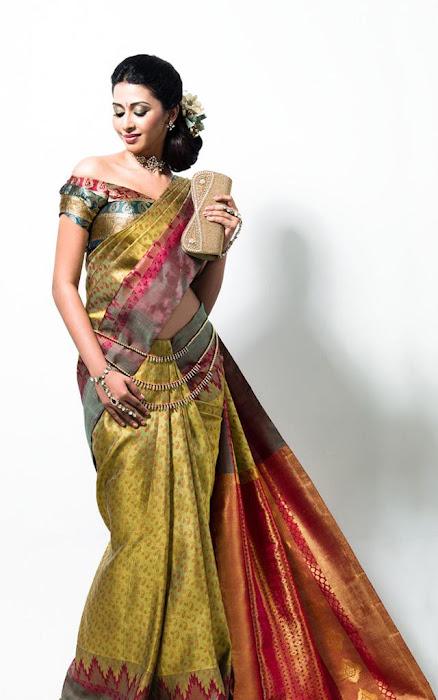 gayathiri wonderful saree ad collections 2012 hot photoshoot