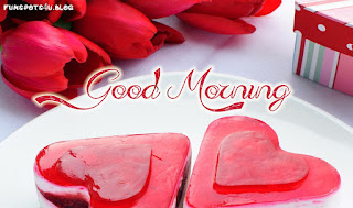 Good-morning-love