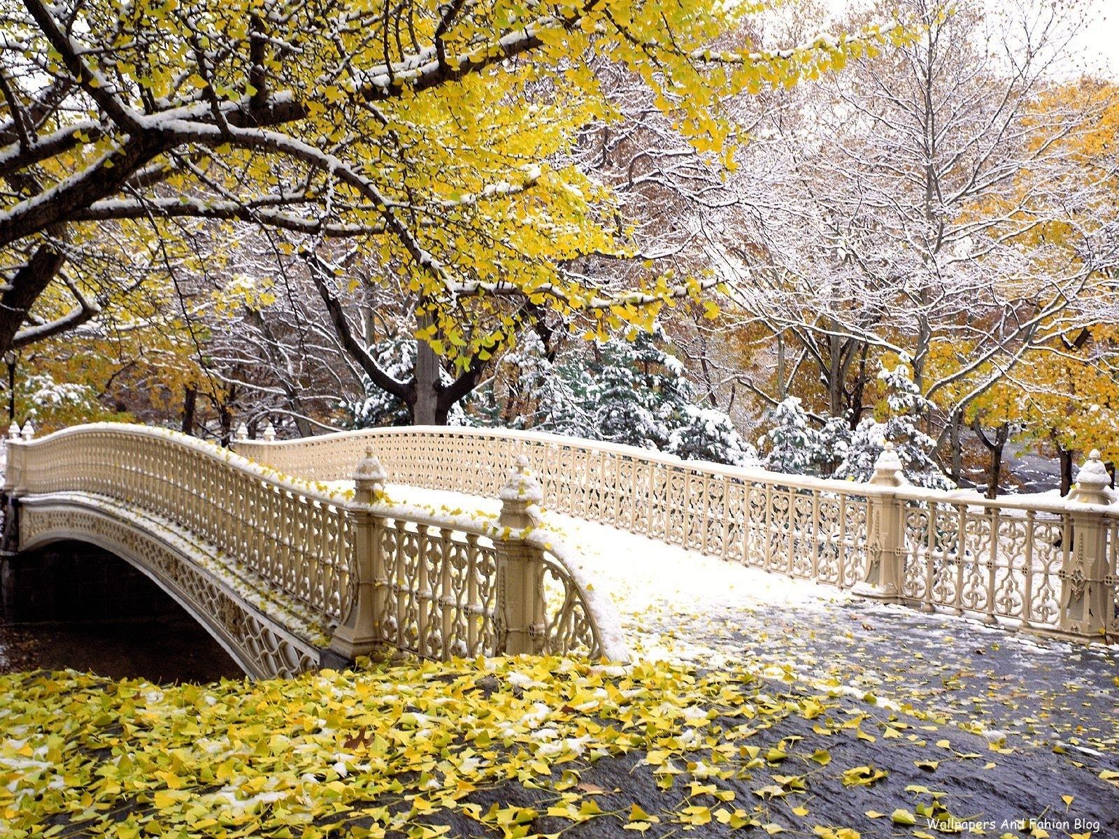 http://1.bp.blogspot.com/-nR2C95Zo_VI/Tpi6MBNd3hI/AAAAAAAAClw/sAbE1QrYDSI/s1600/bridge_autumn_wallpaper.jpg