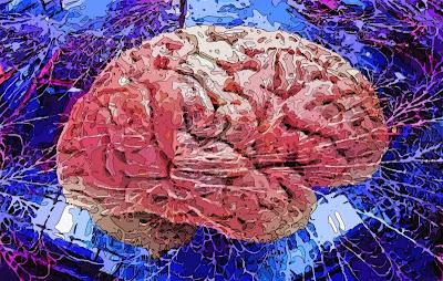 neurocel (Carles Melis)
