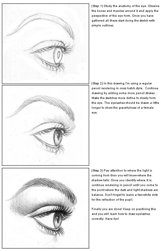 How To Draw Eyelashes With Pencils Step By Step Learn To Draw And