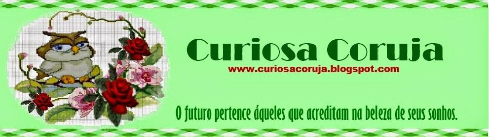 CURIOSA CORUJA