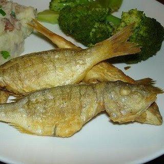 tekir balığı  lüfer avı    lüfer balık    lüfer balığı    lüfer tekneleri    hamsi tava    hamsi buğulama    fırında hamsi    hamsi tarifi    hamsi balık    hamsi nasıl yapılır     lüfer nasıl pişirilir