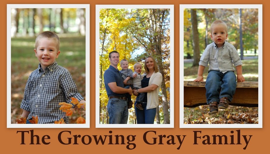 The Growing Gray Family