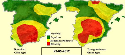 Alergia al polen en el embarazo