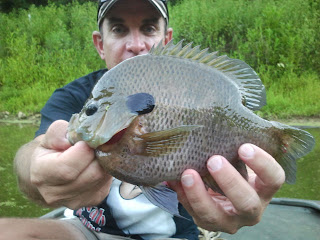 pond fishing tips for bream