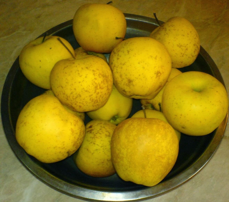 fructe pentru salata de fructe, retete cu fructe, preparate din fructe, fructe pentru salate, fructe exotice, fructe gustoase, fructe proaspete, mere, retete cu mere, retete si preparate culinare din fructe, fructe pentru deserturi,