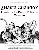 RESISTENCIA MAPUCHE