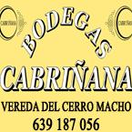 BODEGAS CABRIÑANA