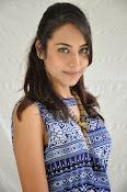 Khenisha Chandran at Jaganatakam press meet-thumbnail-22