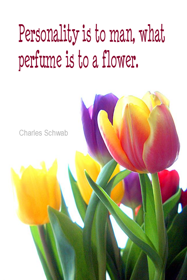 visual quote - image quotation for INDIVIDUALITY - Personality is to a man, what perfume is to a flower. - Charles Schwab