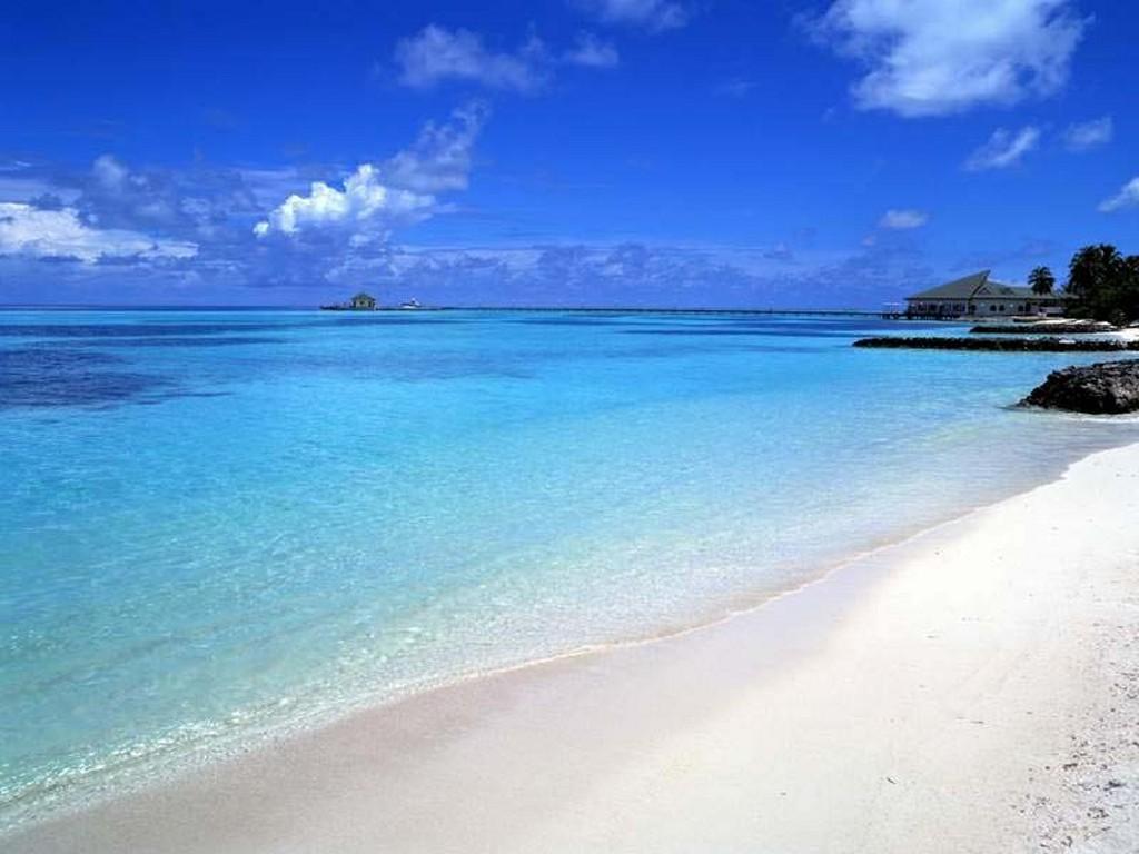 http://1.bp.blogspot.com/-nT3ifyK7PFM/TdOkcWECiPI/AAAAAAAAAQo/afBlAkQ5xLg/s1600/tropical-sea-wallpaper.jpg