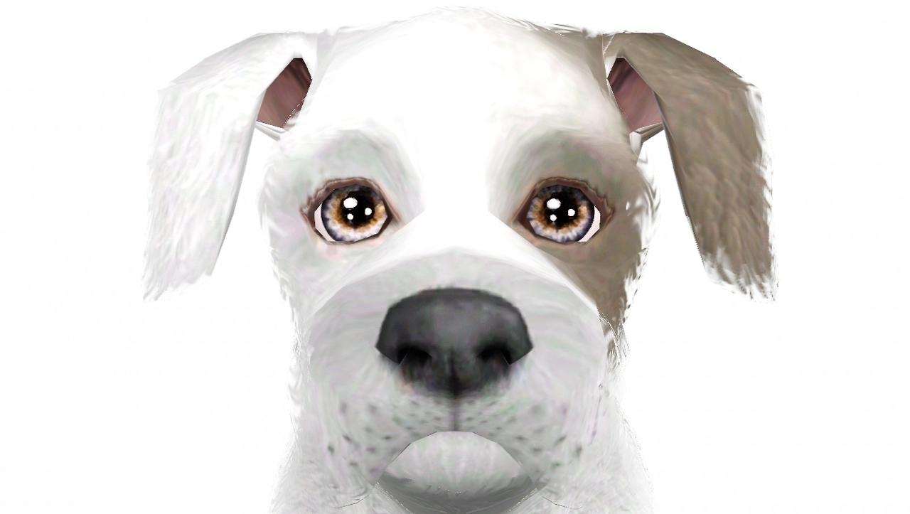 my sims 3 blog nilou s onomatopoeia eyes as pet defaults