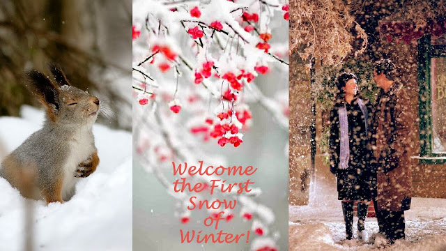 Welcome the beautiful winter season!