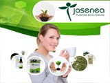Plantas medicinales y aromticas