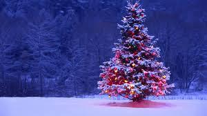 imagen de navidad 4