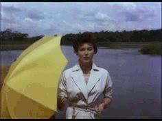13. De groc, horitzó.