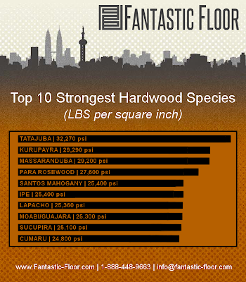 top ten strongest hardwood species