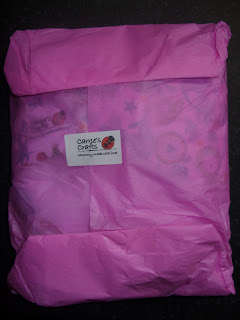 Carrie's Crafts Package