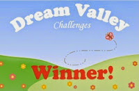 Winner at Dream Valley Challenges
