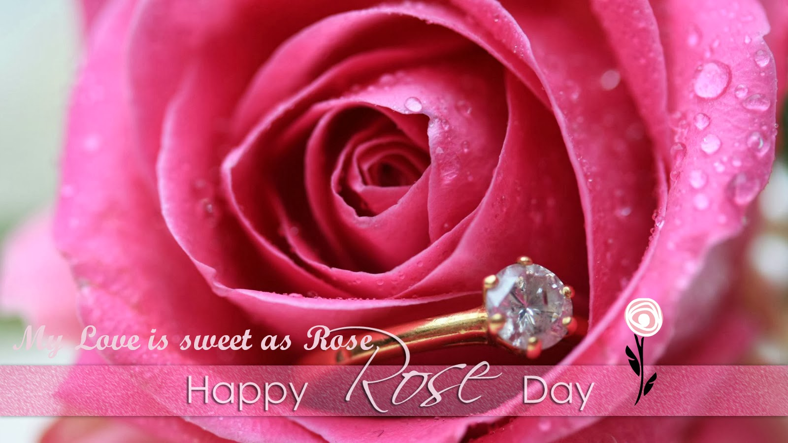 My Valentine 2014 Valentines Day Live Wallpapers Rose Day 2014