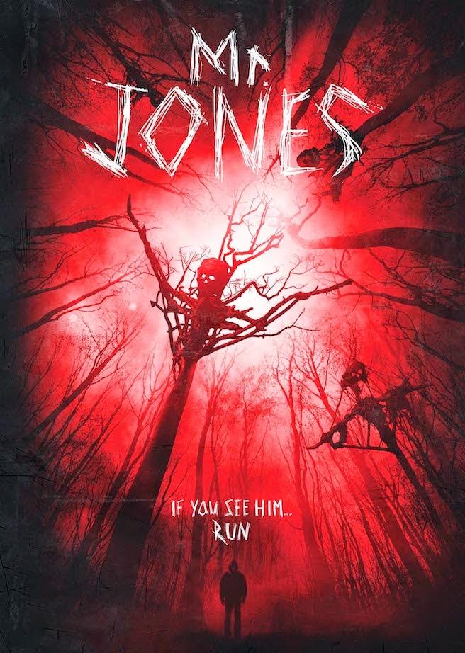 Mr Jones 2013  Brrip ταινιες online seires xrysoi greek subs