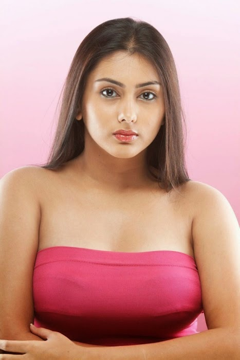 South Actress Namitha Hot HD Wallpapers collection 2014