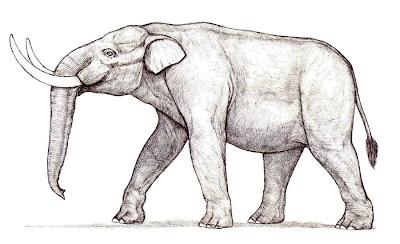 elefantes en Argentina Stegomastodon