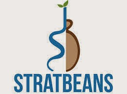 StratBeans Consulting Job Openings