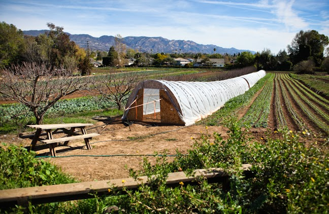 As We Expand Into Organic Farming, We Have Looked To Another Local Organic  Farm For Inspiration And Direction. Fairview Gardens Is Nestled In The  Goleta ...