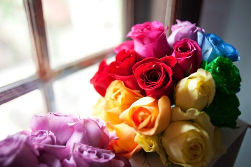 Hoa hồng đủ màu sắc