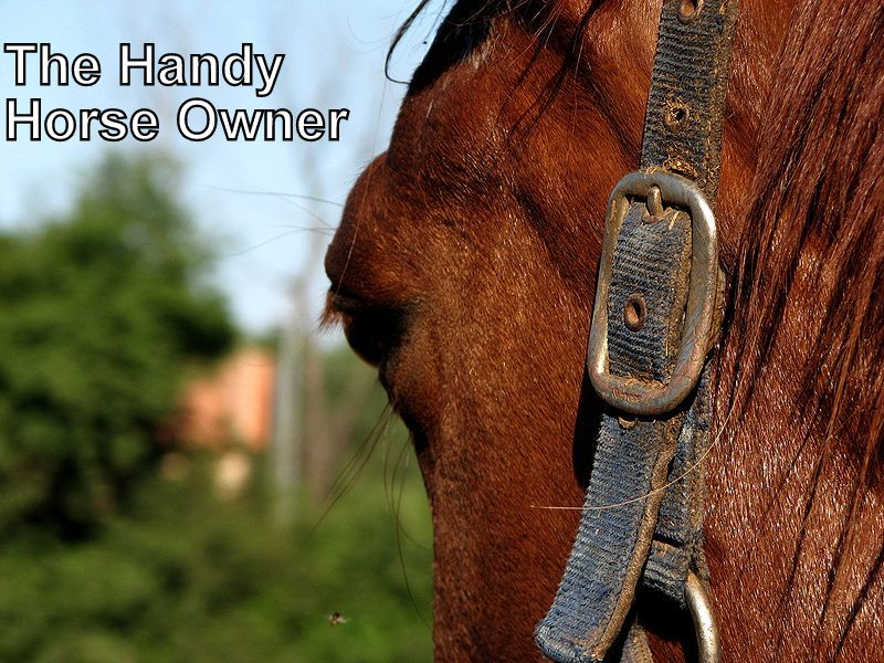 The Handy Horse Owner