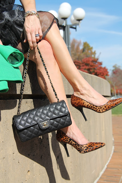 Alyssa Nicole Skirt, Banana Republic Green Coat, Nine West Animal Print Pumps, Blinde Sunglasses, Earrings from JT Posh, Chanel Purse, J. Crew Blouse, Vintage Jewelry, the Queen City Style, The Mint Museum