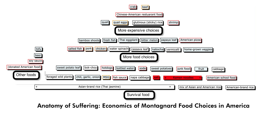 Young Projects Anatomy Of Suffering Economics Of Montagnard Food