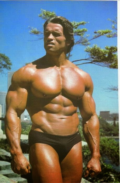 Did Arnold Schwarzenegger Use Anabolic Steroids