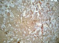 wheat flour sukhdi