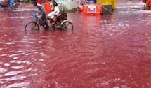 Così scorre il fiume… di sangue animale
